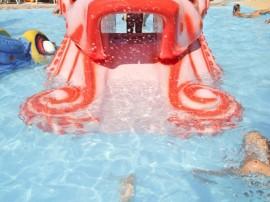 Baby Octopus Slide